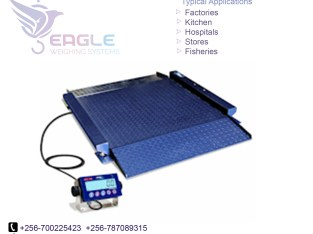 100kg bench scale Indisturial Platform scale weighing scale
