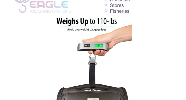 Mini electronic hanging luggage scale