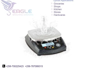 Waterproof precise table top bench weighing scales