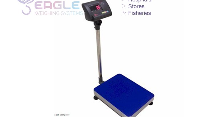 Industrial strong low profile platform scale