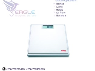 Small Electronic Accurate Balance Original Scales