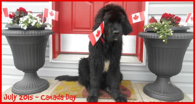 July 2015 - Canada Day