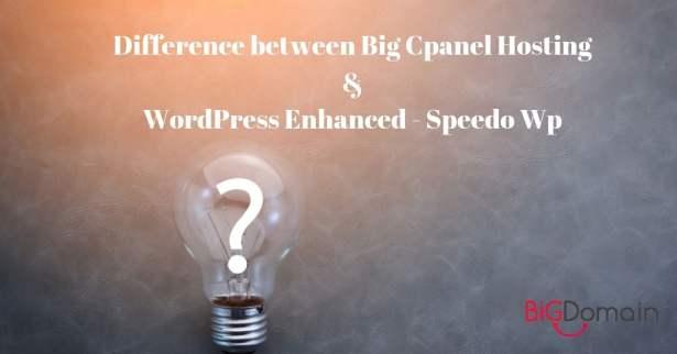 The differences among Big cPanel Hosting, WordPress Enhance-Speedo WP & Website Design Service 3