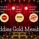 Exclusive Promotion for BigBuddies Gold Member! 12