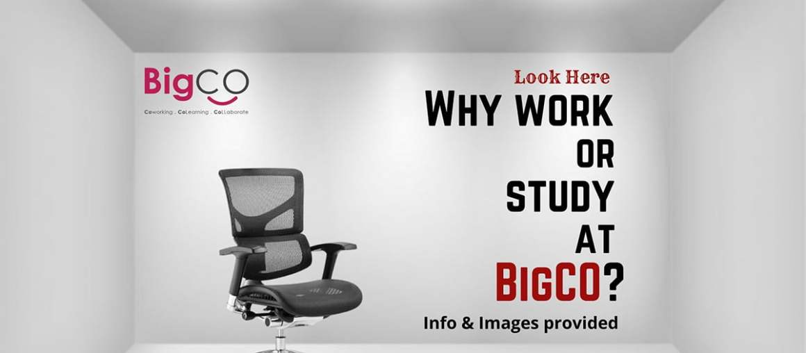 Why BigCo? Nice? Comfortable? Look Here!