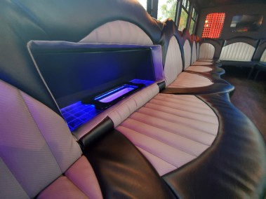 20190516 173102 - 18 Passenger<br>450 Party Bus</br>Limo #28