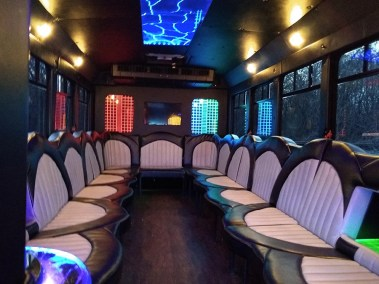 IMG 20190411 192138173 - 18 Passenger<br>450 Party Bus</br>Limo #28