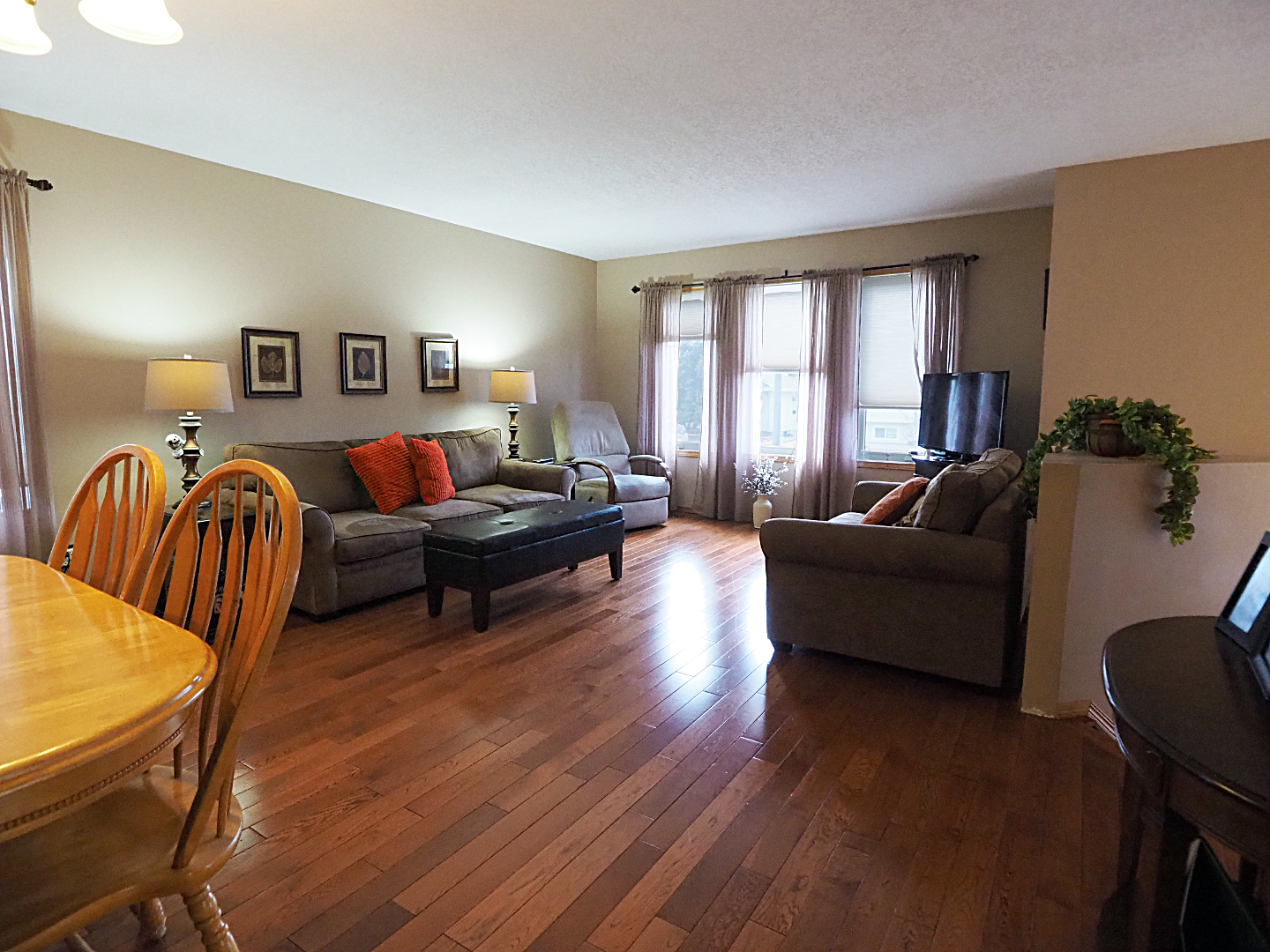 66 Excell Street living room
