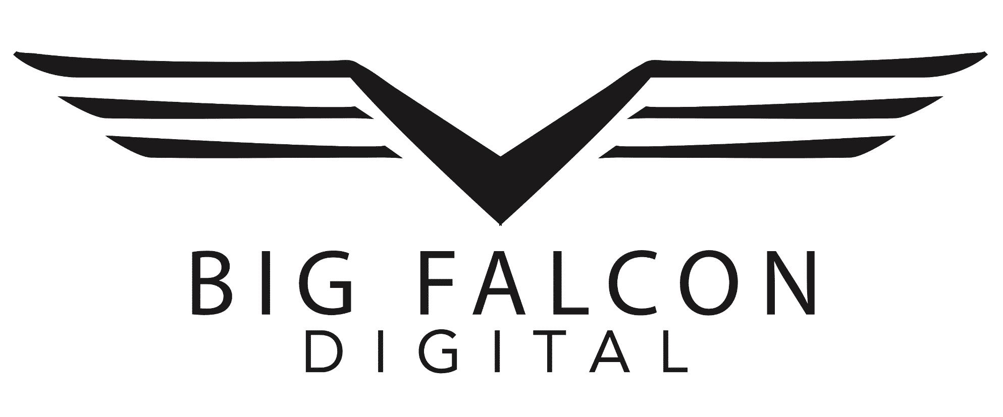 Big Falcon Digital