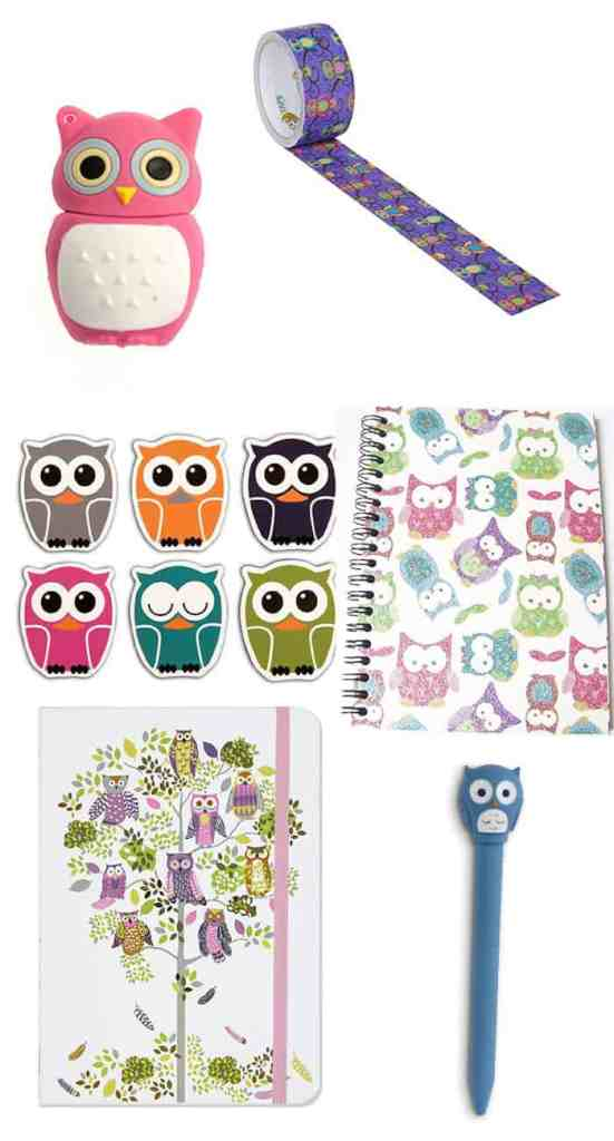 School and Craft gift ideas for an owl loving girl