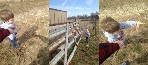 5 on Friday- Garth + Farm Life
