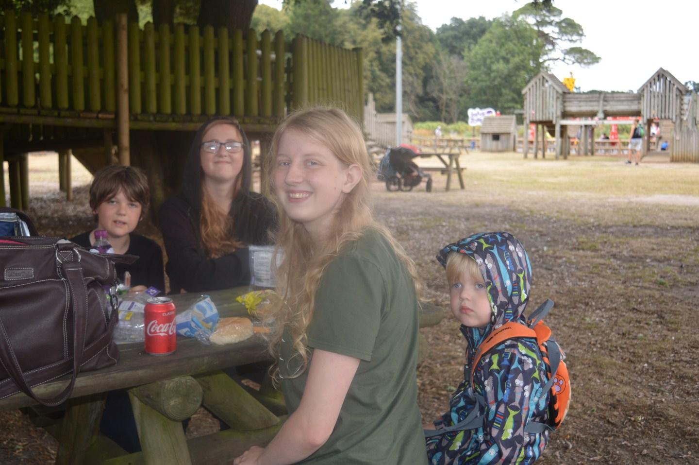 Roarr! Dinosaur Adventure picnic area