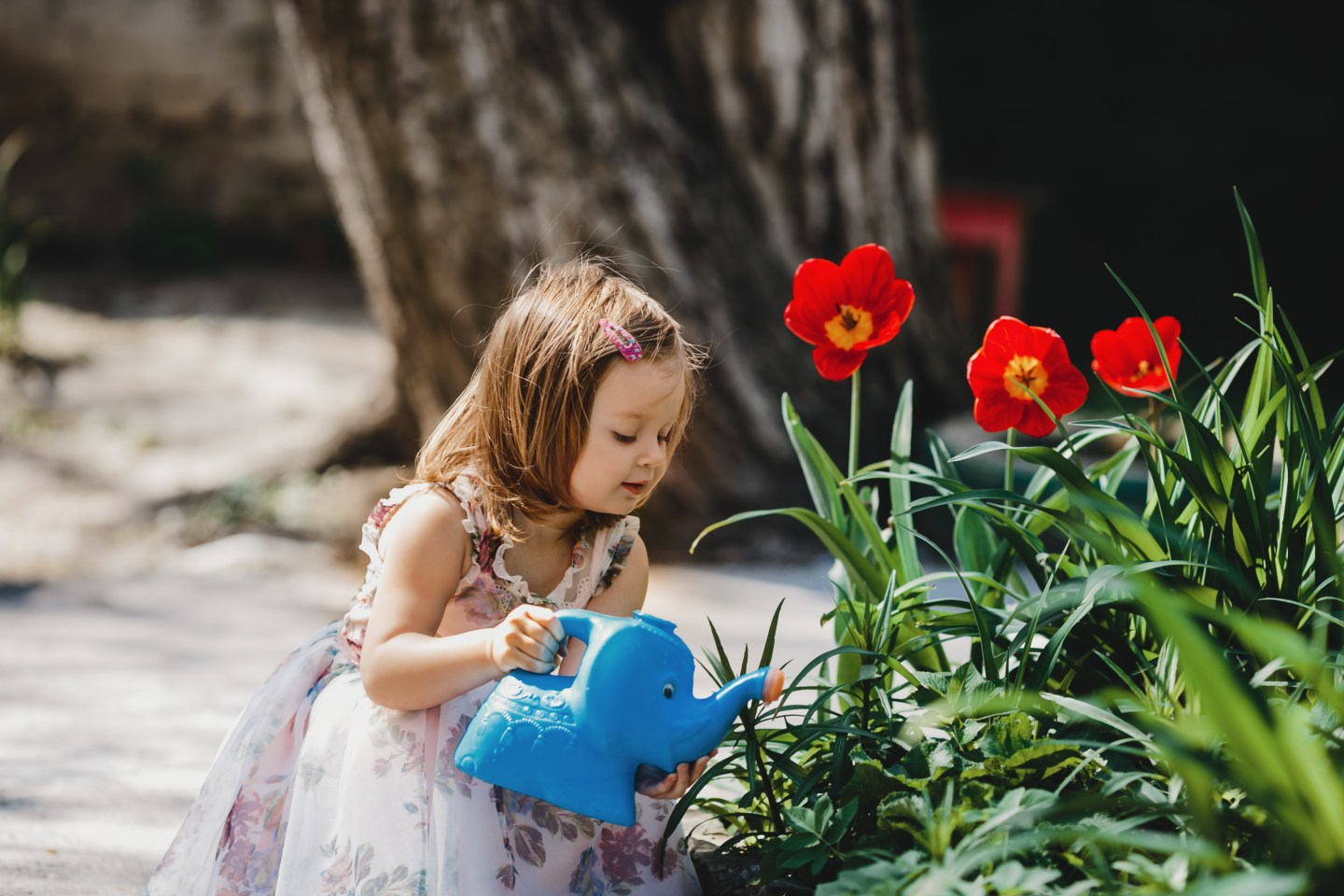 Fun Outdoor Activities: Spend More Time with Your Kids Gardening