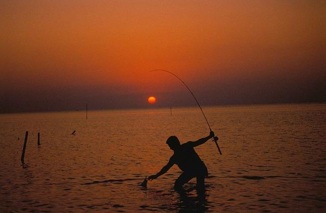 フィッシュグリップで魚を掴んでいる人