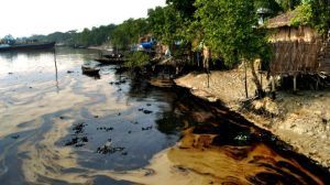141215110717_bangla_sundarbans_oil_spills_pollution_640x360_afp_nocredit