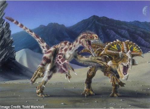 ডায়নোসরদের উপযোগী পরিবেশ তৈরি করতে হলে কম করে হলেও ৫ হাজার ডায়নোসর (যে কোনো প্রজাতির) তৈরি করতে হবে। ছবিঃ Todd Marshall