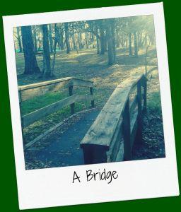RC Bridge Framed