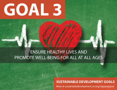 #GlobalGoals: Using What We Have