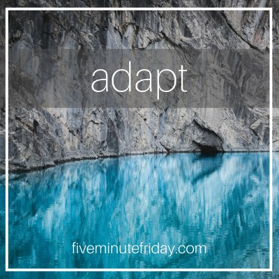 Five Minute Friday: ADAPT