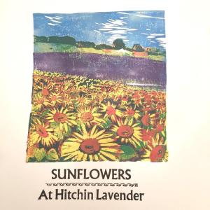 Lino print of the sunflowers at the Hitchin Lavender Fields