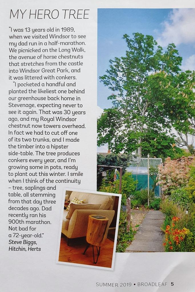 MY HERO TREE article in Broadleaf magazine