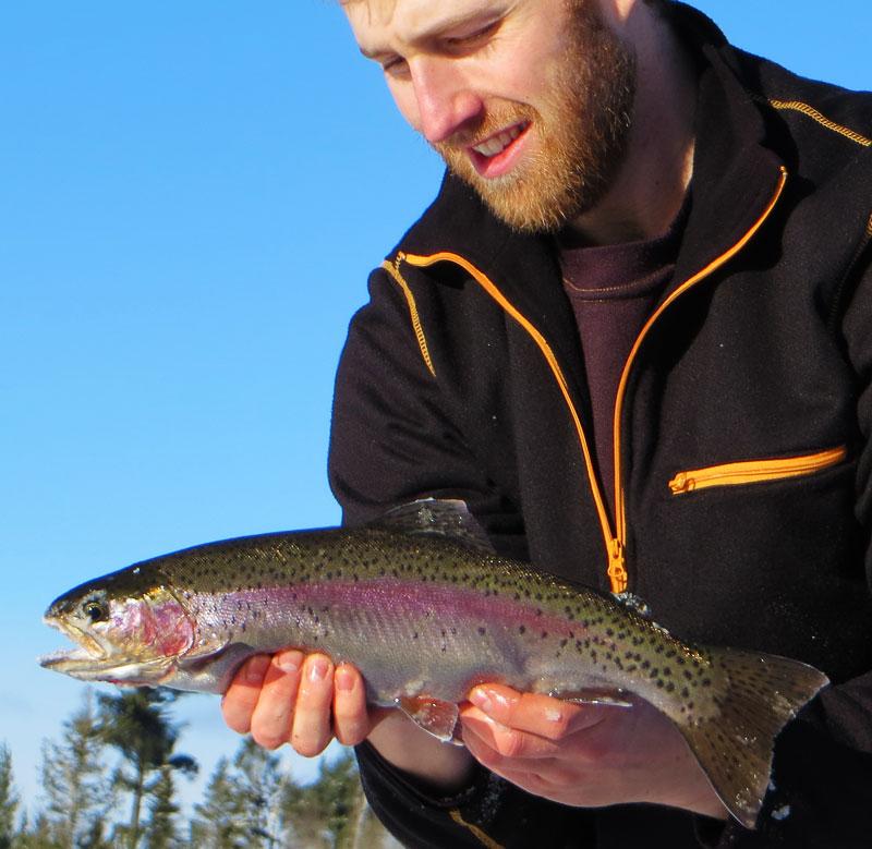 Northern Minnesota Ice Fishing Rainbow Trout