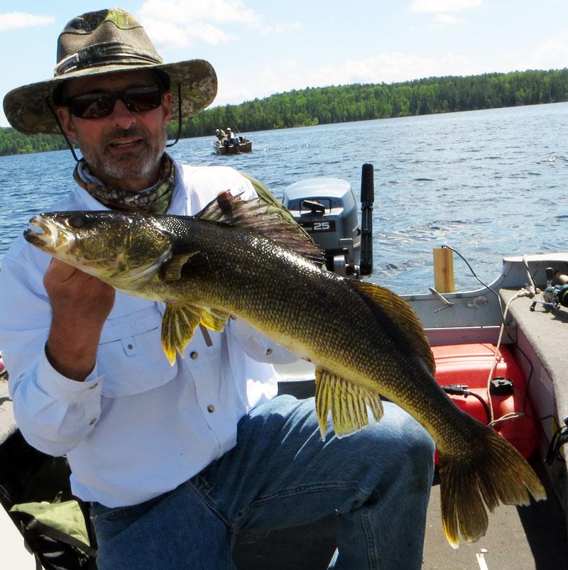 """30"""" Walleye Basswood Lake Boundary Water Canoe Area"""