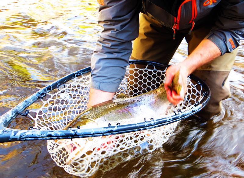 Fly Fishing Steelhead on North Shore of Lake Superior