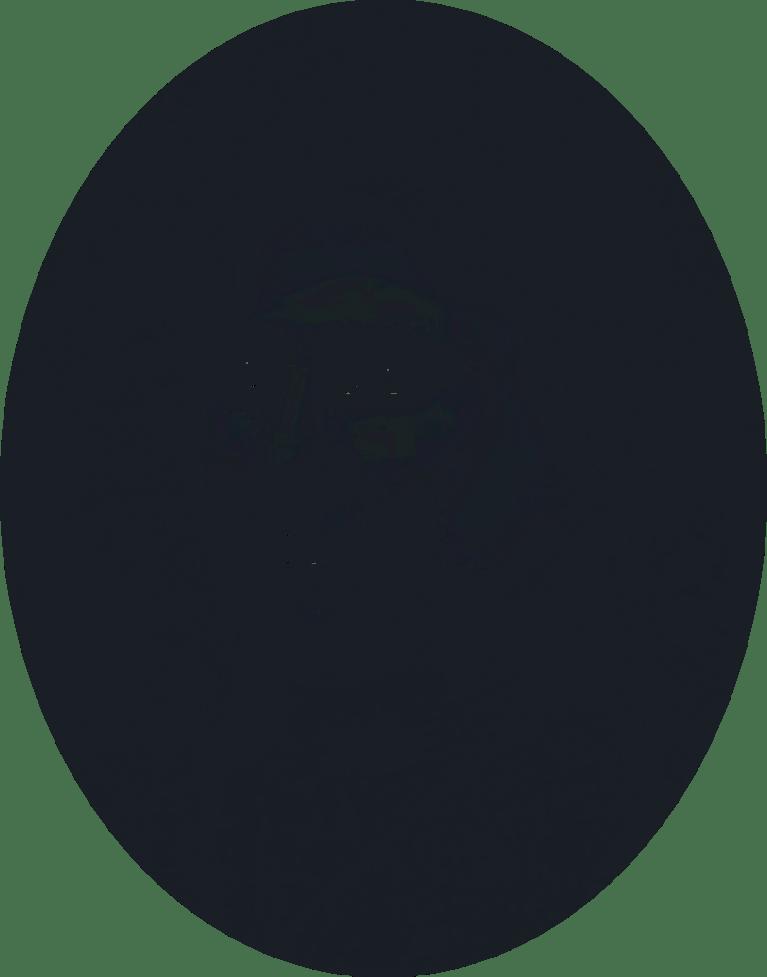 BNK_Web_Story_002_alt