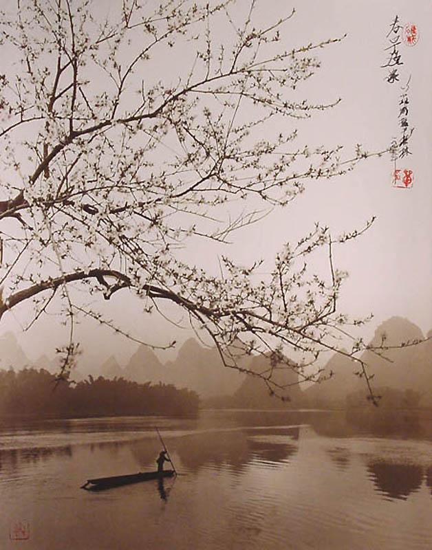 1428 Фотографии в стиле традиционной китайской живописи
