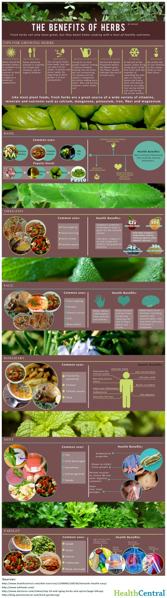 Photo credit: http://visual.ly/benefits-herbs