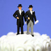 So Called Same Sex Marriage Wedding Cake Square Pic