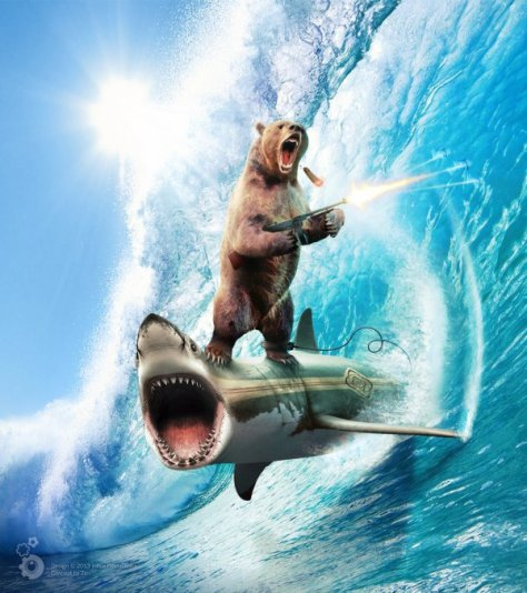 Bear Riding a Shark