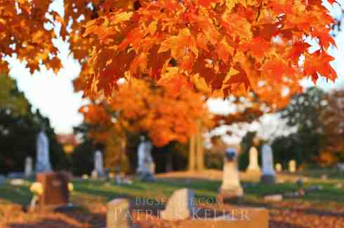 Fall Leaves in a Cemetery, Big Seance