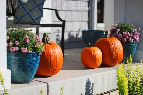 Family of Pumpkins 2014, Big Seance
