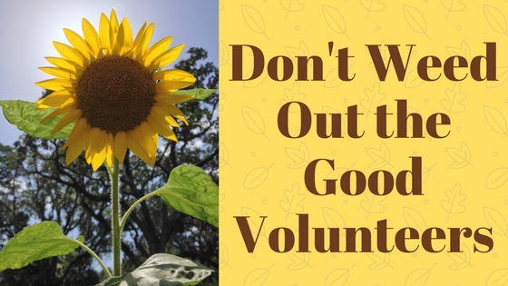 Don't Weed Out the Good Volunteers