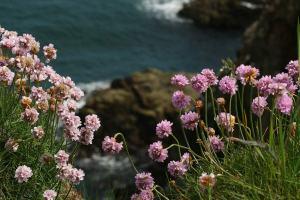 Scotland in April