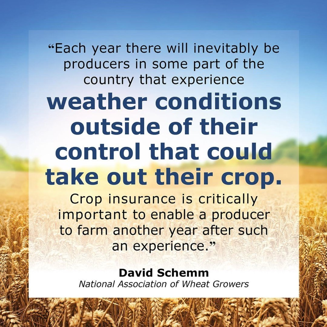 NAWG Crop Insurance