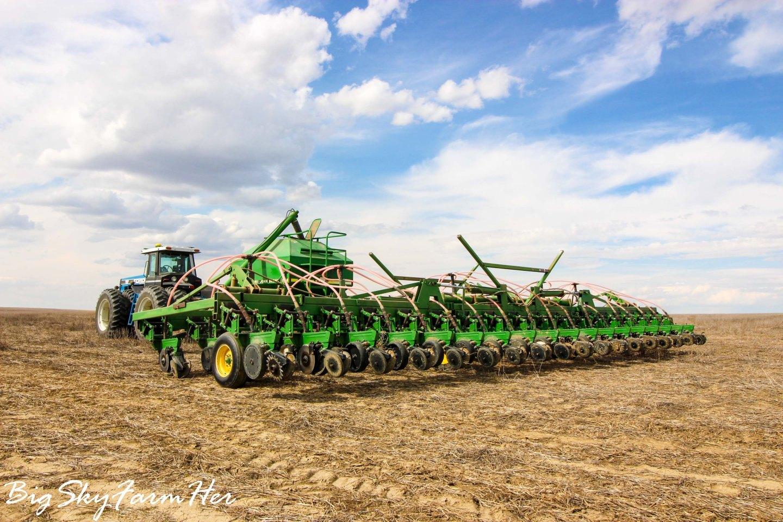 Seeding-6950
