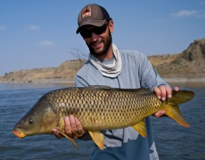 A nice carp caught on a dry fly 50 miles east of Billings, Montana.