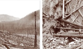 """Left: The """"Big Burn"""" of 1910. View from the Northern Pacific Railroad grade after the fires raced through Lolo National Forest. Right: Mouth of the mine in which Ranger Ed Pulaski held 50 men as the fire burned over, this saving their lives. Photos Courte"""