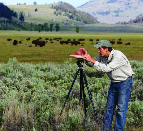 George Bumann sculpting bison from life in Yellowstone Park's Lamar Valley.