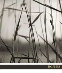FF09_photo-essay-HOPPERS_web.jpg