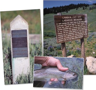 The historic Lander Cutoff of the Oregon Trail traverses the high country along upper LaBarge Creek, near the Tri-Basin Divide. The route is strewn with the poignant graves of pioneers who perished during their journey west. • Center: Introduced trout species like rainbows have harmed native cutthroat populations through hybridization and competition for food and habitat.