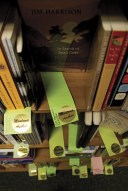 Chartreuse colored slips indicating Montana writers, decorate most of the shelves at Fact and Fiction.