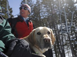 Fay Johnson, Bridger Bowl ski patrol director, rides the Pierre's Knob chairlift with trained avalanche rescue labrador Ethel in Bozeman, Montana.
