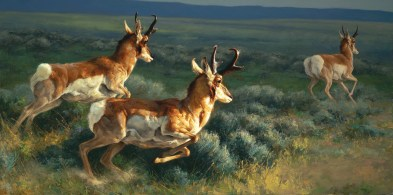 """The Buddy System"" 