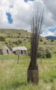 """""""Timber""""   Jennifer Pulchinski   Barbed Wire & Wood   4' tall"""