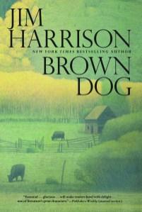 brown_dog.jpg