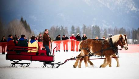 A party atmosphere with food friends and a ceremonial parade is part of the skijoring draw.